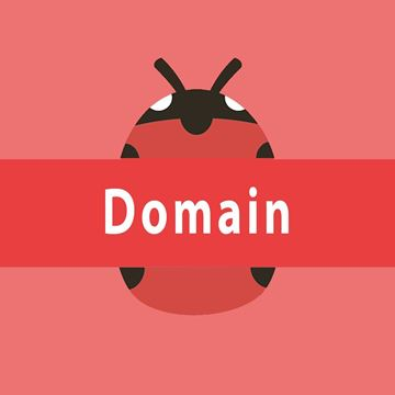 Picture of Custom Domain